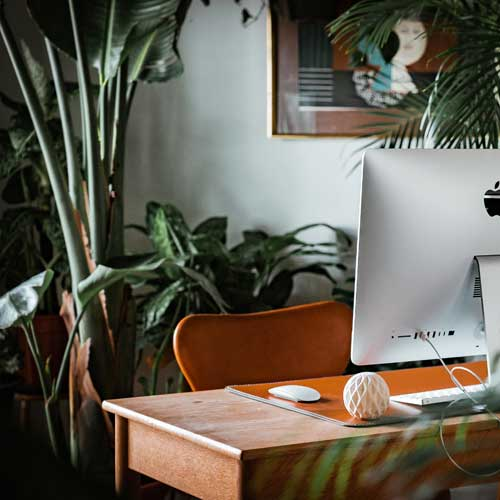 office desk with computer in tropical setting