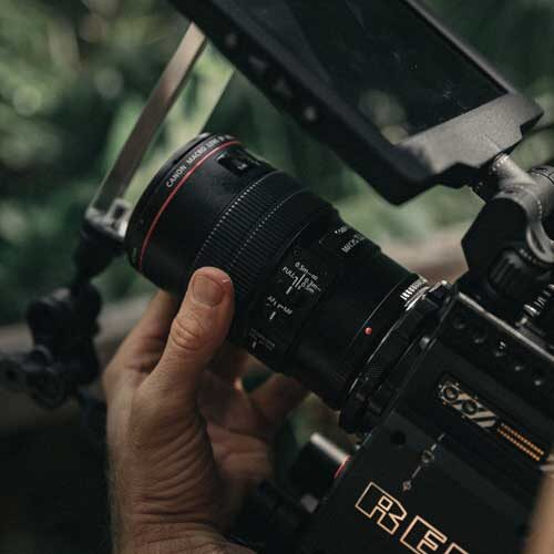 red camera hand on focus